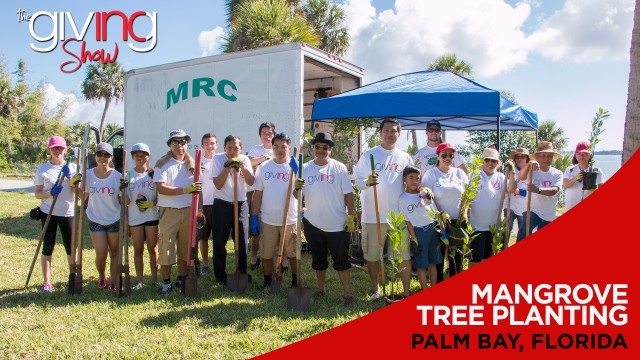 INCGiving, In Focus – Mangrove Tree Planting Helps Florida Shorelines
